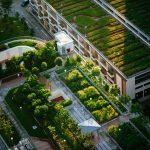 Comment créer un potager dans un petit rez-de-jardin ?