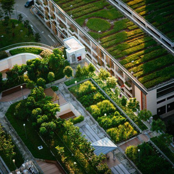 Des espaces verts et jardin en ville