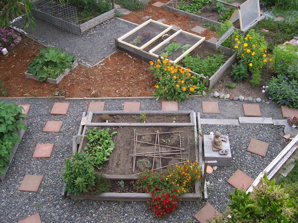 Un jardin avec des potages en carré