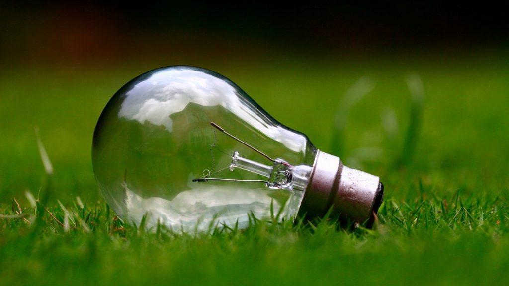 ampoule posée sur de l'herbe
