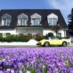 champ de fleurs violettes devant une grande maison